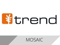 trend-mosaic